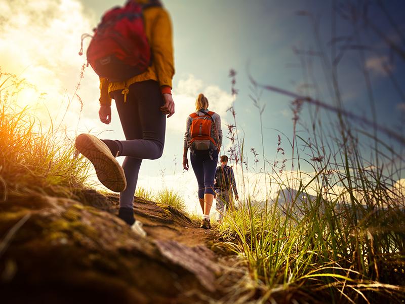 bureau-guides-meribel-3vallees-randonne-summer